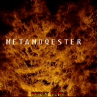 Metamoqester (U) / Oni: The Ninja Master (J)