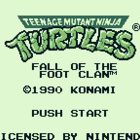 Teenage Mutant Ninja Turtles (J) / Teenage Mutant Ninja Turtles: Fall of the Foot Clan (U) / Teenage Mutant Hero Turtles: Fall of the Foot Clan (E)